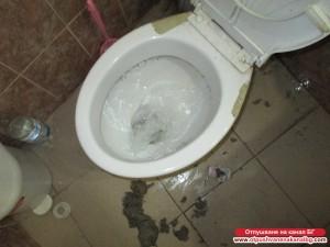 Работеща тоалетна чиния